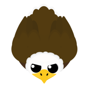 Old Bald Eagle