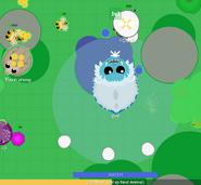Aqua Yeti-roar