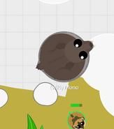 GiantMusk