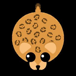 Oldest Jaguar