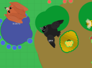 Raven-fly