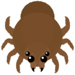 Goliath Spider.png