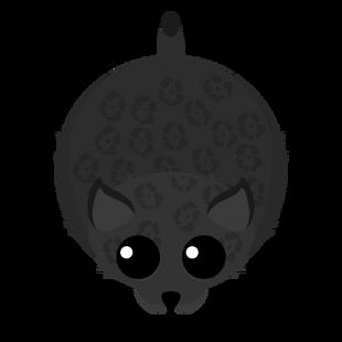 Old Black Panther