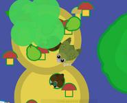Kakapo-hop