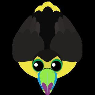 Old Keel-Billed Toucan