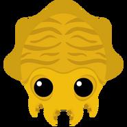 Goldensquid