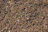 Cement-sidewalk-close-up-texture