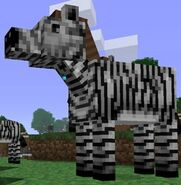 Zebra minecraft