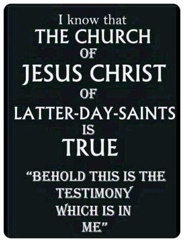 Testimony1.jpg