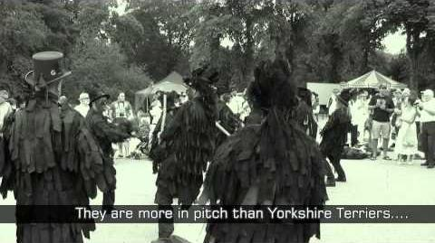 Morris Dancing Stone The Crows plus extra guitar track...