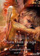 COFA cover, Vietnamese 03