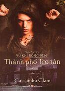 COA cover, Vietnamese 02