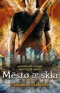 COG cover, Czech 02