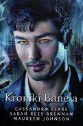 TBC cover, Polish 01