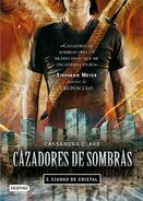 COG cover, Spanish 01