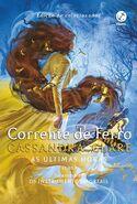 COI cover, Brazilian-Portuguese 01