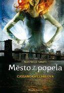 COA cover, Czech 02