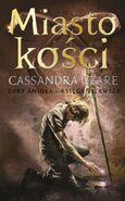 COB cover, Polish 04