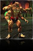 Shokan (fighting style)