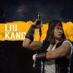 Liu Kang7.jpg