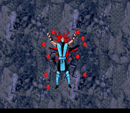 Mortal Kombat II 005