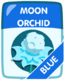 Blue Moon Orchid.png