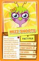 Top trump orange Mizz Snoots