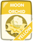 Yellow Moon Orchid.png