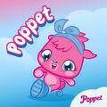 Facebook Poppet 2014-05-18 Poppet