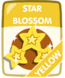 Yellow Star Blossom.png