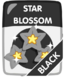 Black Star Blossom.png