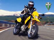 Mz 125 sm sportbike