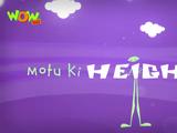 Motu Ki Height