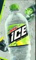 Icebote600
