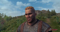 Bannerlord character face