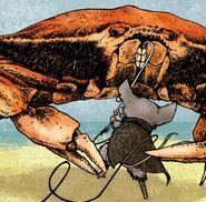 Conrad Crab