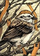 MouseGuard-Sparrow