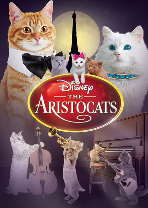 The Aristocats (Live Action Remake)