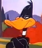 Daffy Duck character