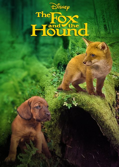 Fox and The Hound (Liveaction Remake)