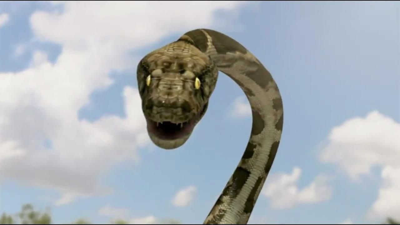 Mega Pythons
