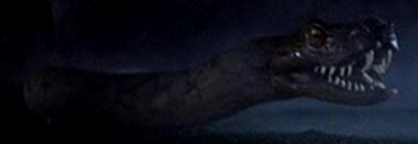 Cave Python