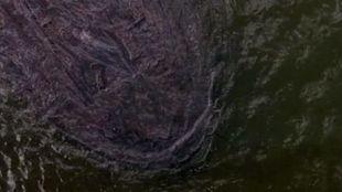 Oil Blob