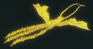 Anime Ghidorah render 1