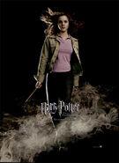 Der Feuerkelch Charakterposter Hermine Granger