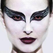 Black Swan Quiz