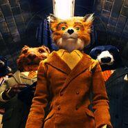 Mr Fox Quiz