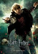 Die Heiligtümer des Todes, Teil 2 Charakterposter Ron Weasley