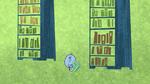 Books 4524
