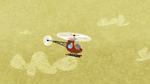 Flying 2895